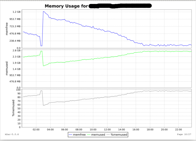 Page 5 - Daily Memory Usage graph