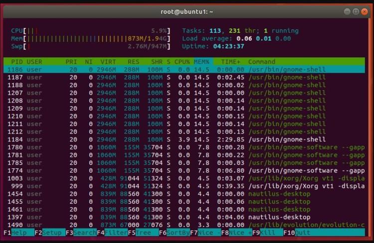 perintah HTOP di linux terminal