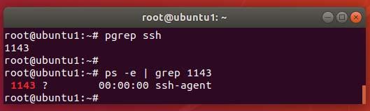 pgrep dengan ID di ubuntu