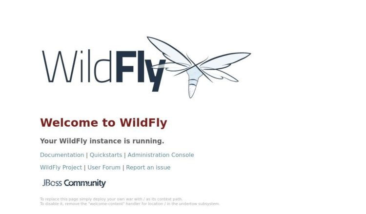 wildfly home